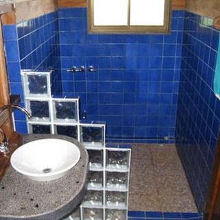 toucan-macaw-bathroom.jpg