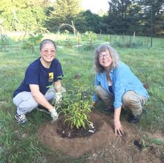 Volunteers at Triple Crane