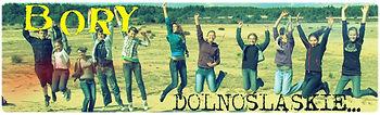 Radio Bory Dolnośląskie