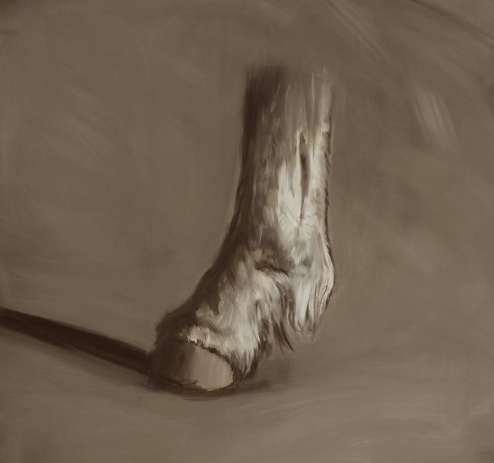 Hoof of Caius