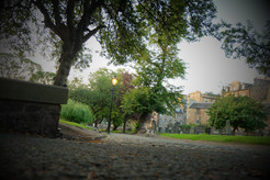 The graveyard at Greyfriars