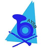 aysblogofinallarge_1.png
