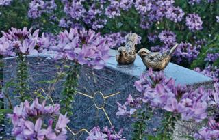 21.9.2019 - Tag des Friedhofs