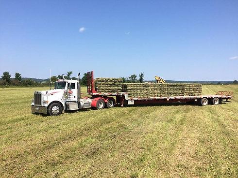 Load of Hay.jpg