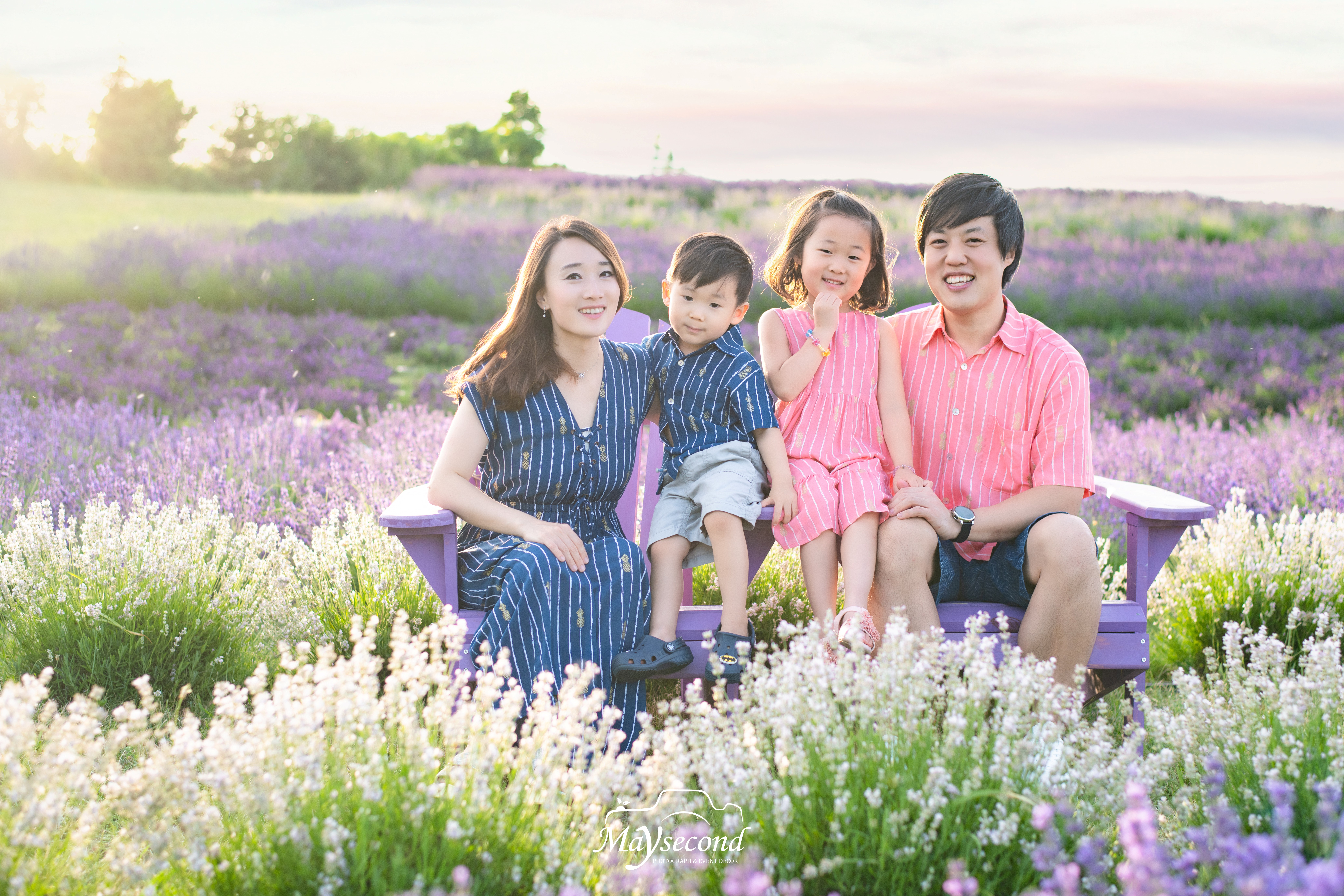 2020 Lavender Farm