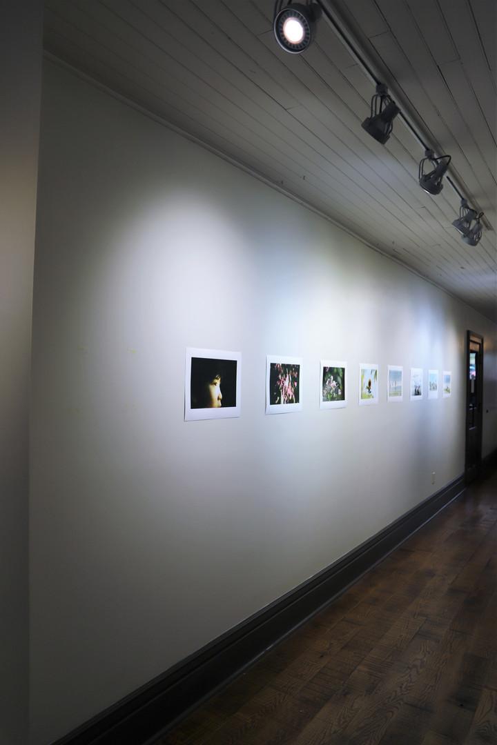 Ha Nguyen Exhibit at CSPS Hall