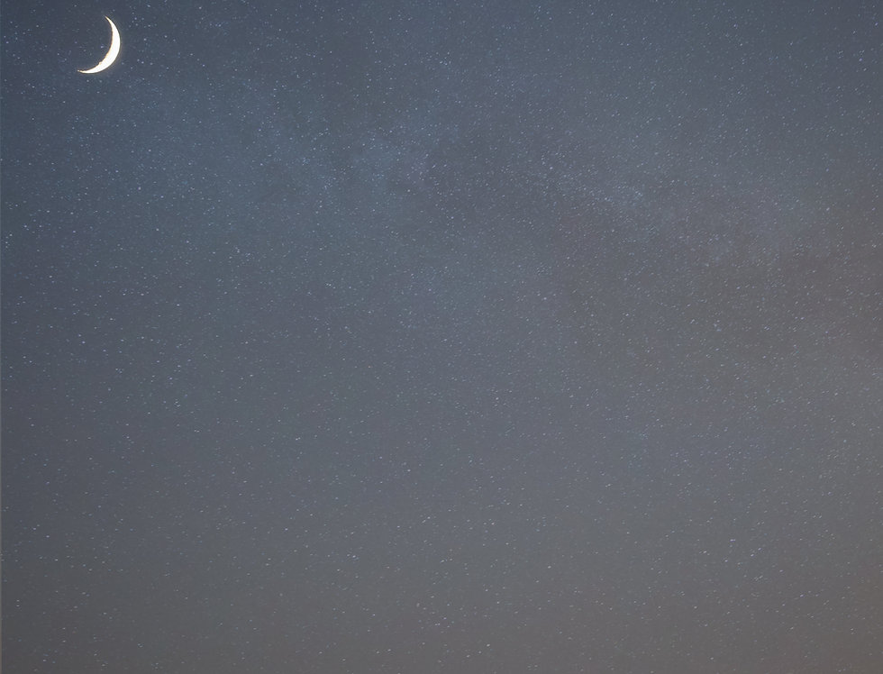Venus de Moon