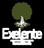 Exelente_Logo_neg.png