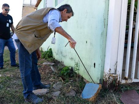 Cresce em 60% o n.º de Inspeções da DIVAL para recolher escorpiões