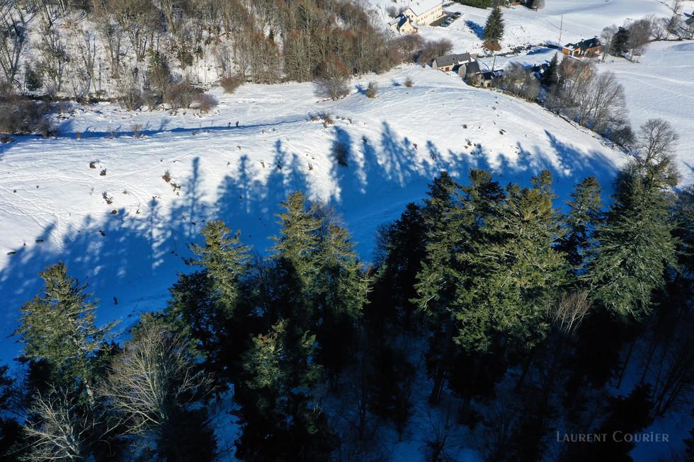 Foret de Payolle Campan - Dronespace Laurent Courier