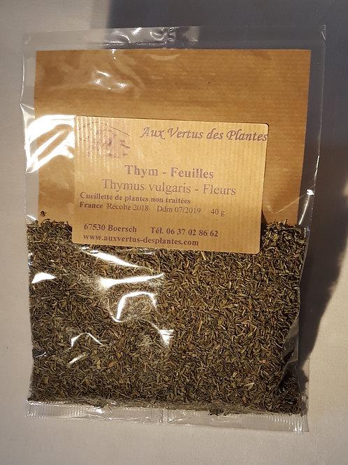 Plante Thym (Thymus vulgaris) 40 g