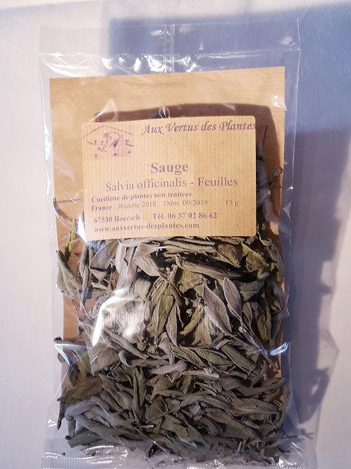 Plante Sauge (Salvia officinalis) 20 g
