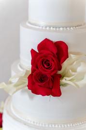 El Paso Wedding Cake Rose