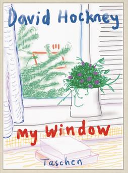 David Hockney my window