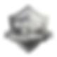 logo onix.png