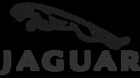 Jaguar_edited.png
