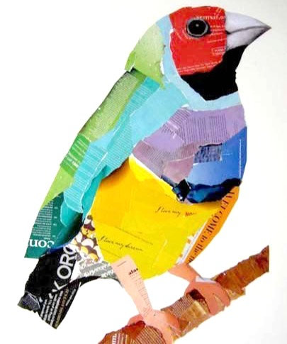 Collaged Birds