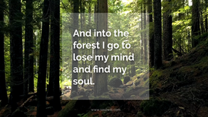 And into the forest I go to lose my mind and find my soul.