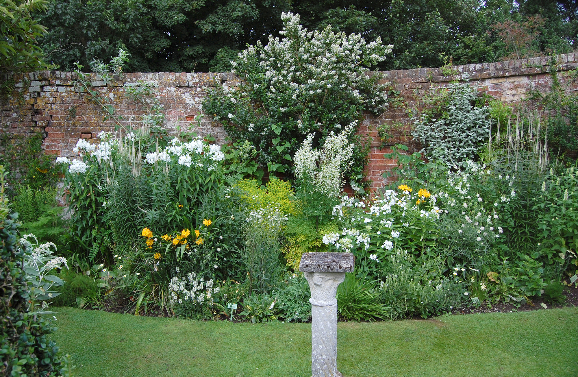 White and yellow border.