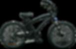 The Werks 10 speed 500w 48v ROCK SHOX