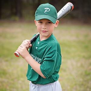 Baseball - Pinto