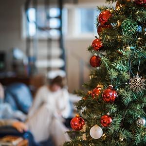 Dwan Family Christmas