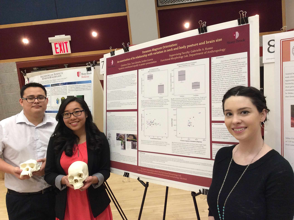 """Christina Chan (center; '17 Health Science Major and Anthropology Minor), Jordan Guerra (left; '18, Anthropology and Human Evolutionary Biology major) and Tara Galusha (right; '16 Anthropology and Psychology major) presenting their work on: """"Foramen Magnum Orientation: An examination of its relationship with variation in neck and body posture and brain size""""."""