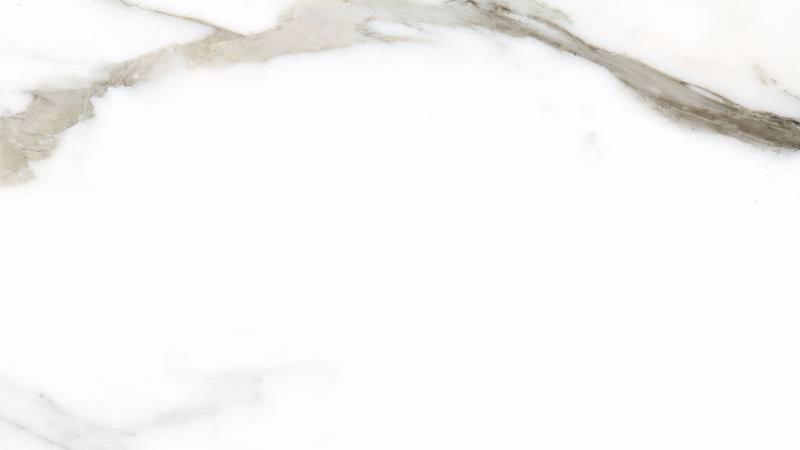 Calacatta Gold White