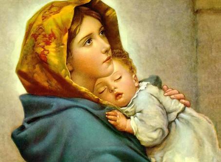 Conhecendo os dogmas marianos