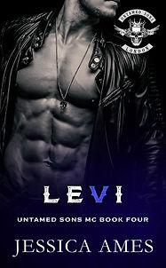 Levi enbook.jpg