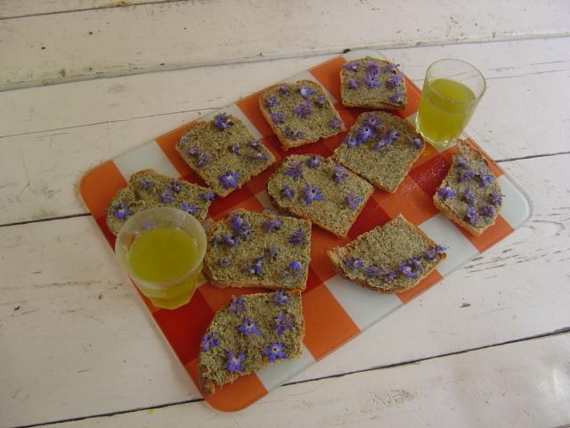 Toasts et apéritif aux plantes