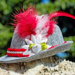 hat-1662654_1920.jpg