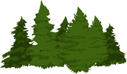 pines-576574_1280.png