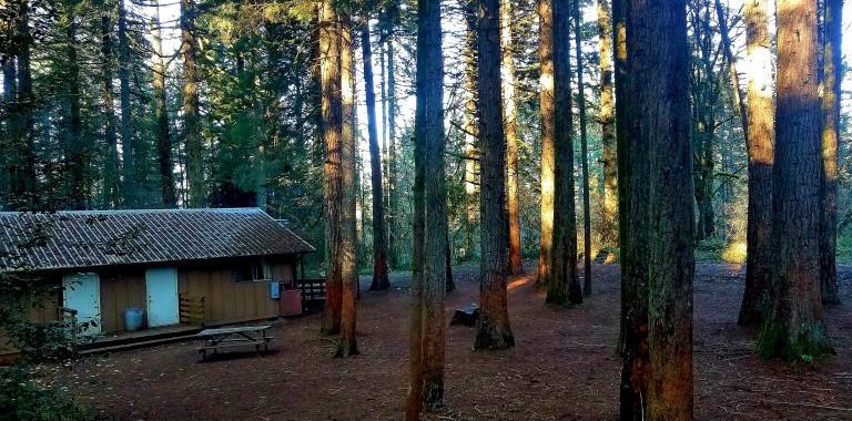 oreogn-4h-center-cabin-area-768x576.jpg