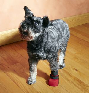 Wound Boot