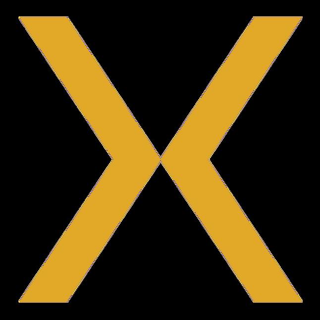 Logo X.png