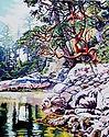 Blessed Arbutus 8 x 10 copyright 2021 Lori Morris copy.jpg