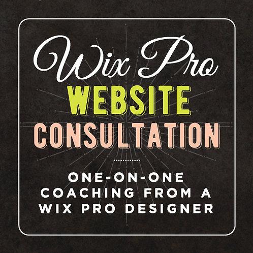WIX PRO WEBSITE CONSULTATION SESSION (1hr)
