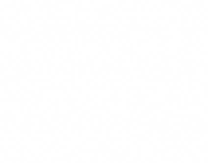 WHITE-2-PATTERN.png