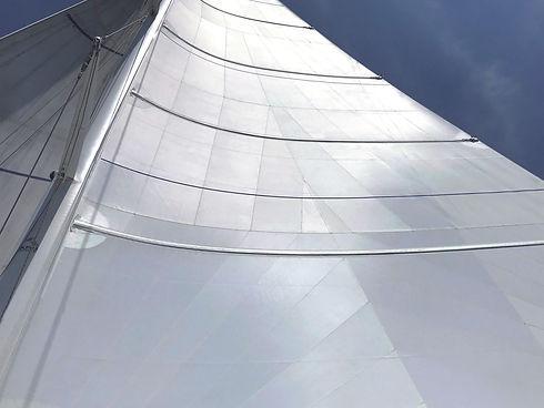 CDX zeilen Lion sails