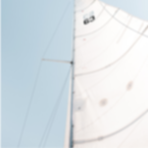 Dacron zeilen Lion sails