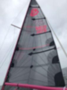 PXB zeilen lion sails