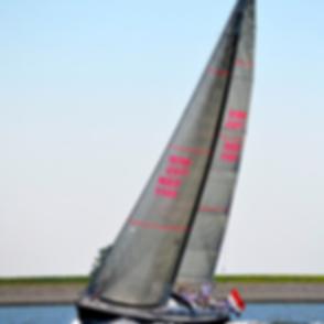MXL membraam zeilen lion sails
