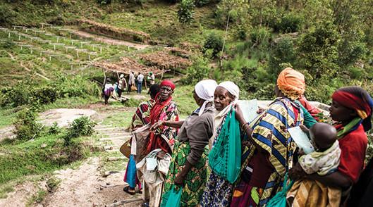 Burundi Farming Field