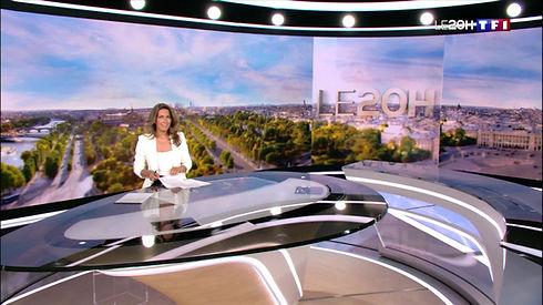 D.G.F au Journal de 20h sur TF1 - Guêpes et frelons pourquoi ils seront encore là cet automne