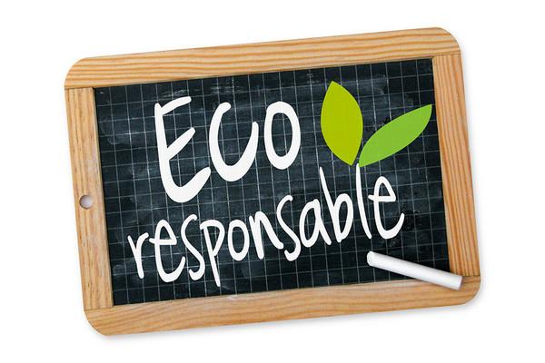 Destruction Guêpes et Frelons 78 Yvelines Versailles, engagement eco-responsable