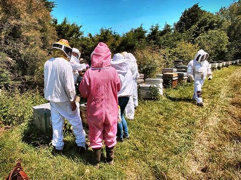 17 Juillet 2021 - Journée complète formation apiculteur amateur