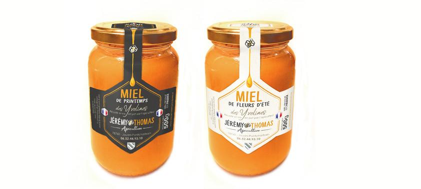 miel esseims abeilles guêpe 78 Yvelines Versailles