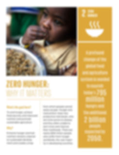 2_Why-it-Matters_ZeroHunger_2p-1.jpg
