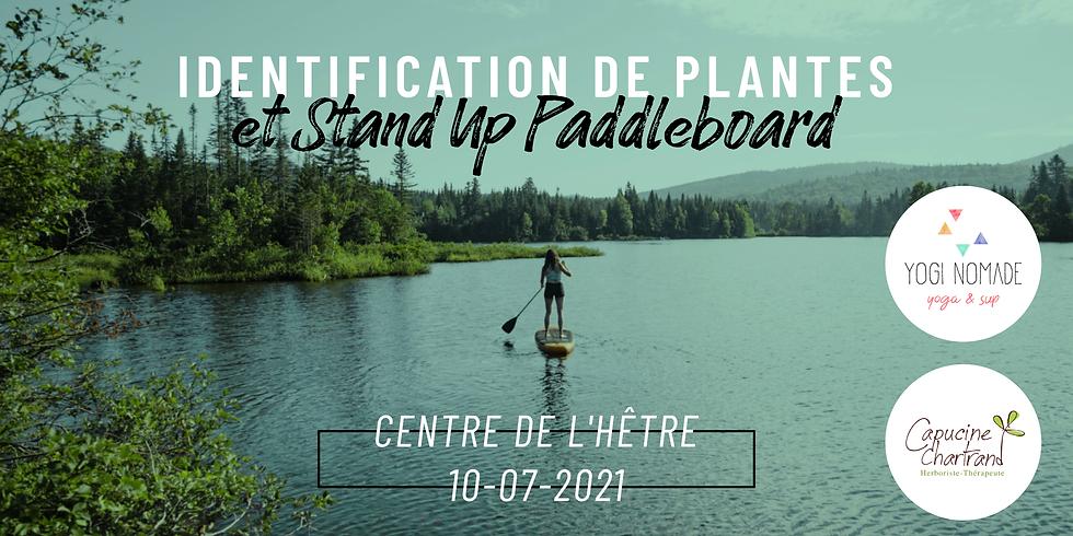 Identification de plantes et Stand Up Paddleboard
